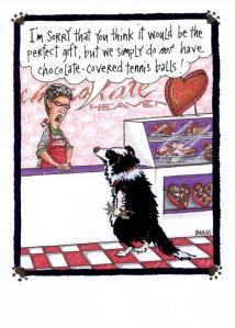 http://steve.agilitynerd.com/milos-valentines-day-card.html