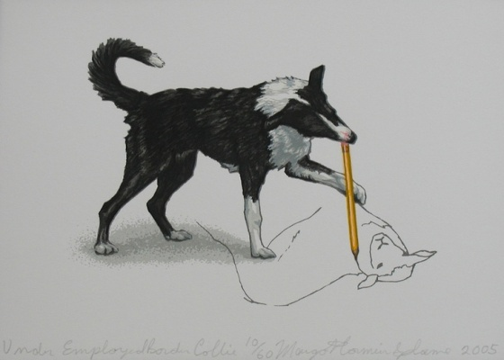 Under Employed Border Collie by Margot Comier Splane